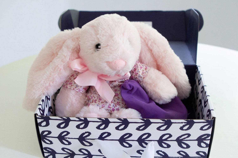 Stuffed Bunny Gift Set for Kids, Xander the Microwaveable Bunny - Lavender-Life.com