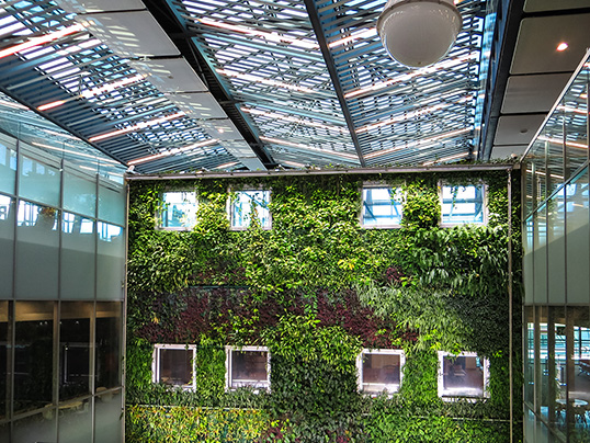 Luxembourg - Green certifications like LEED certification can be complex. Here's how to get started.