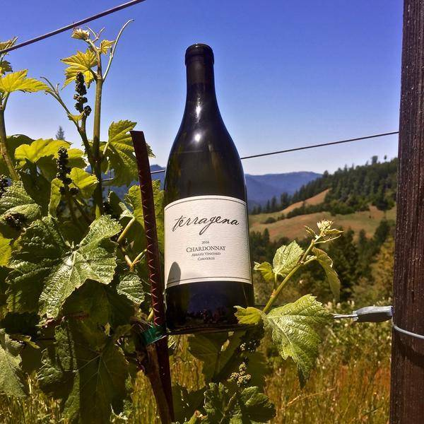 Terragena Abbassi Vineyard Chardonnay 2016 750ML | Revittle