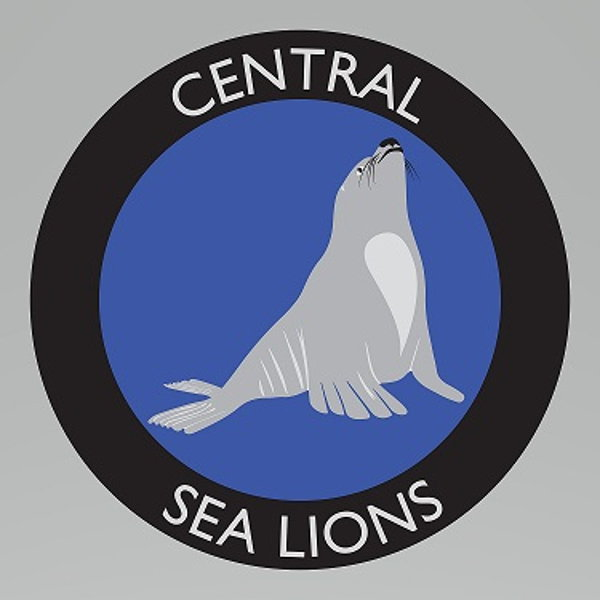 Central Elementary PTA