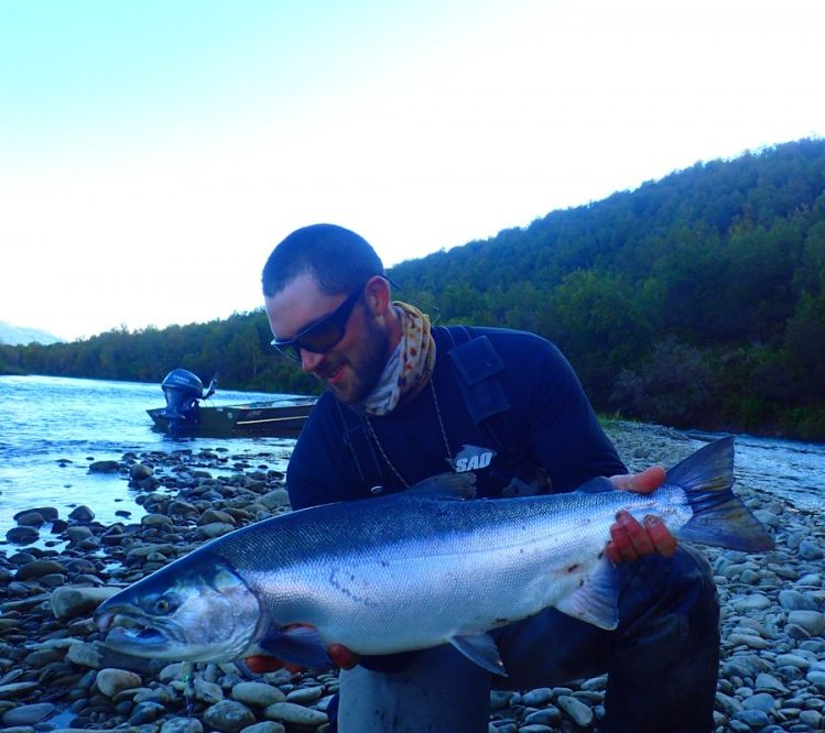 Fly fishing in alaska for trout silver pink chum salmon for Pike fishing alaska