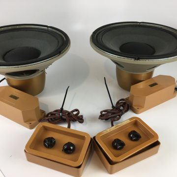 "Gold 12"" Drivers"