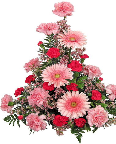 HF Gerbera & Carnation Basket