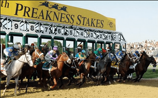 Latest Odds Preakness Stakes
