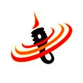Data Outsourcing India logo