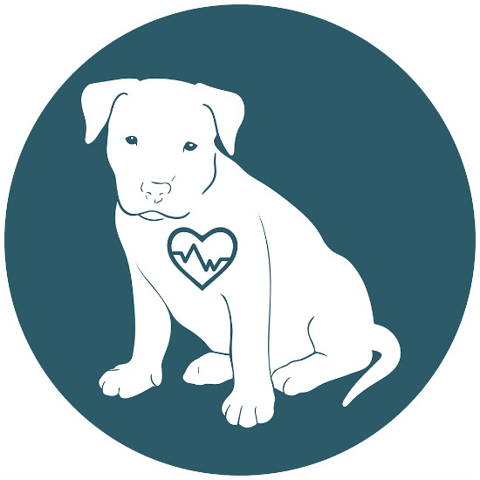 Deep Pressure Touch physically slows the heart and breathing rates. This means that your dog's body feels calmer.