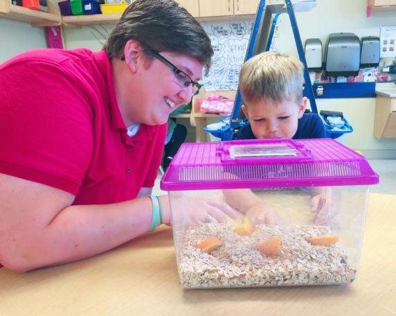 Ms. Diepenbrock , Prekindergarten Teacher