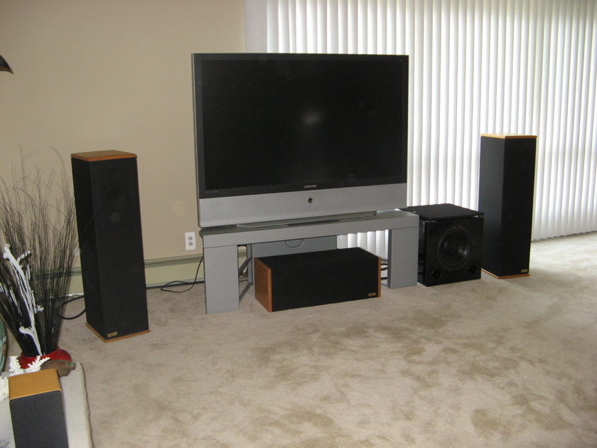 Chapman Audio Systems  1 pair of T-6 speakers w/ center channel