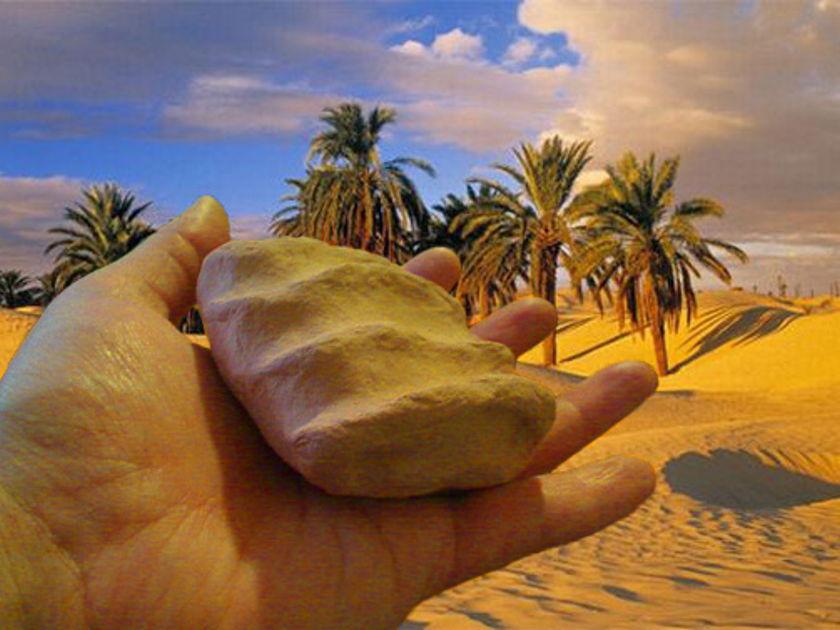 Coconut-Audio VibraPortal Sahara Forest (year 2011 award!)
