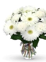 HF White Gerbera & Carnation Bouquet