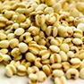 oat beta glucans