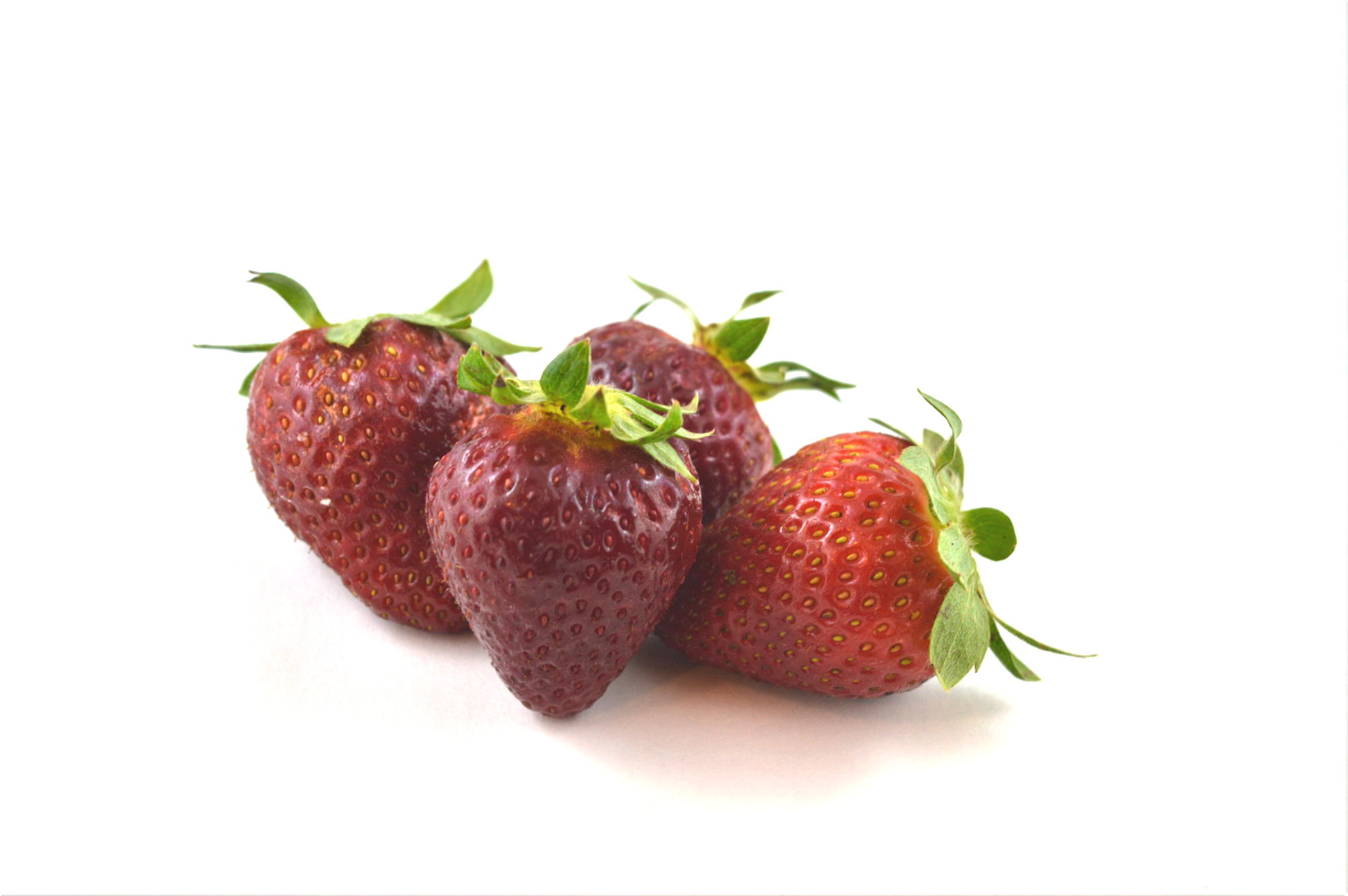 Strawberries - Souto Farms Fresh BC Fruit