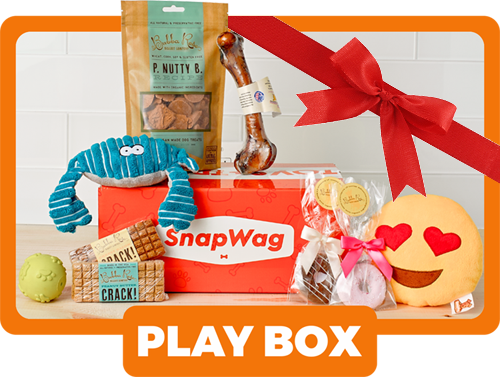 Gift Box For Dog Lovers - Play Box