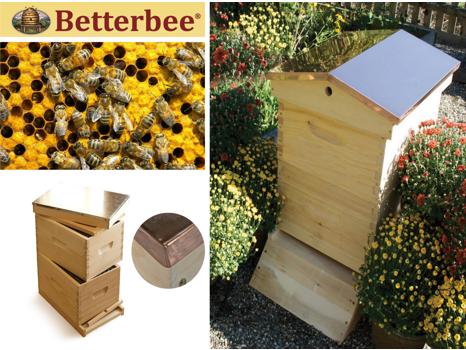 BetterBee Starter Kit