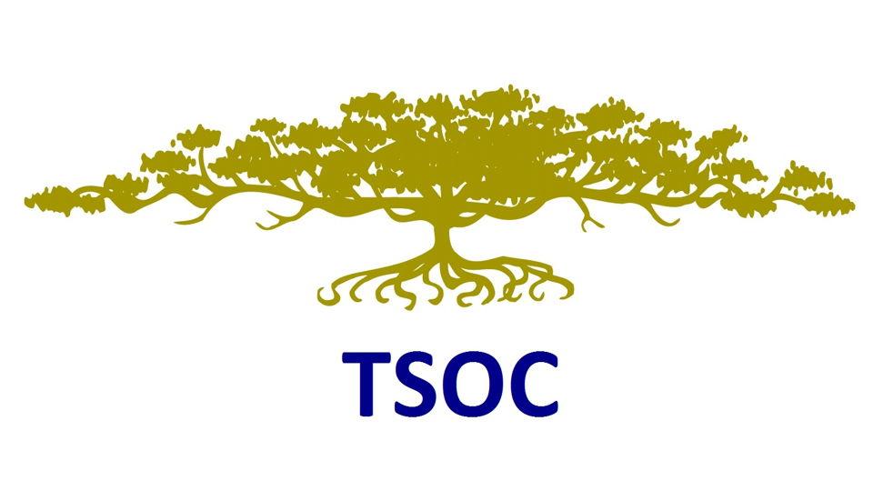 TSOC Studiereis Japan en Zuid-Korea
