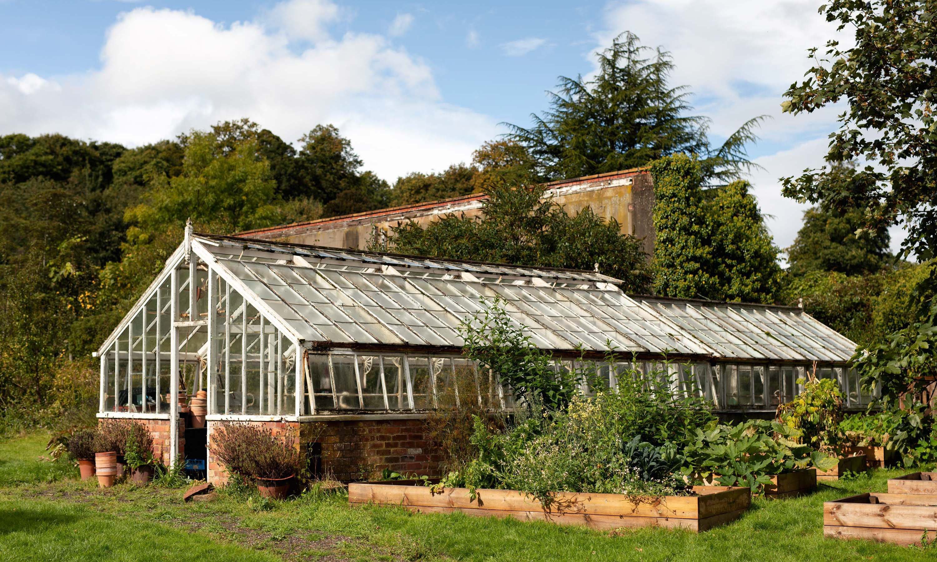 Xanthe Gladstone greenhouse at Hawarden Estate