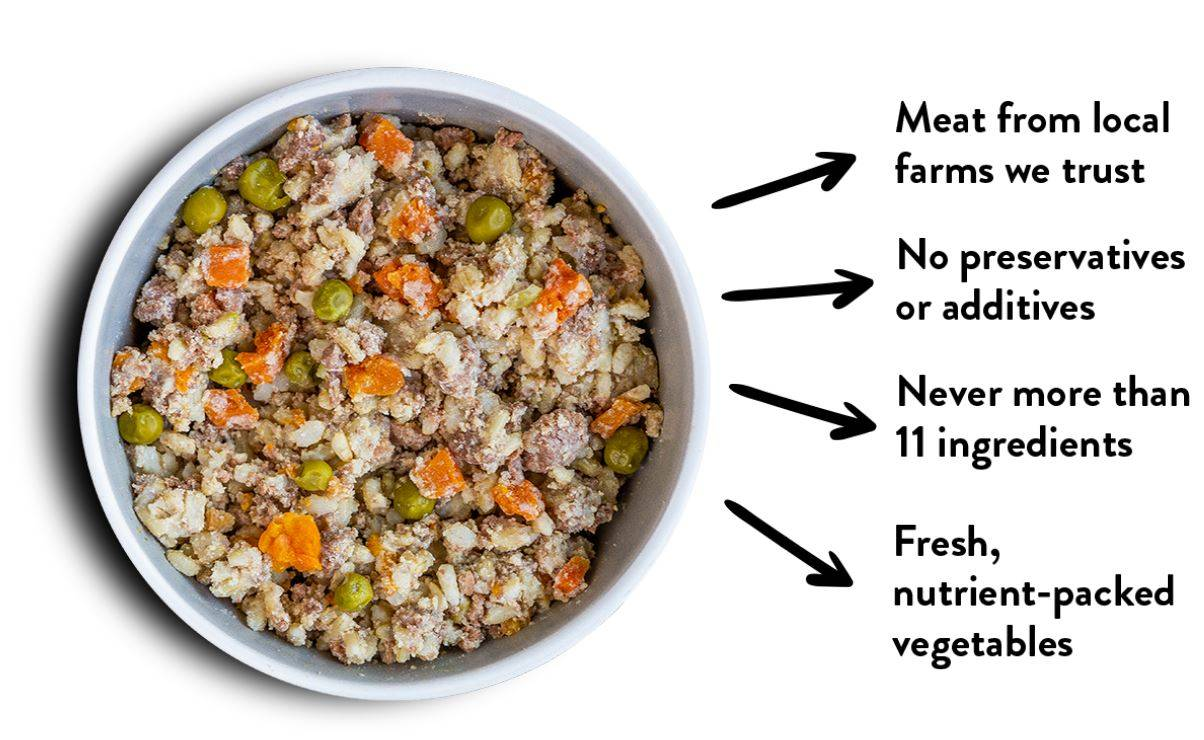 A bowl of Rosie's Beef N Rice human-grade dog food meal mixer.