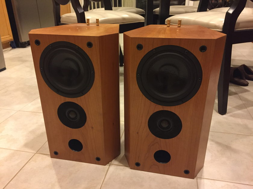 PBN Audio Mini Monitor Loudspeaker