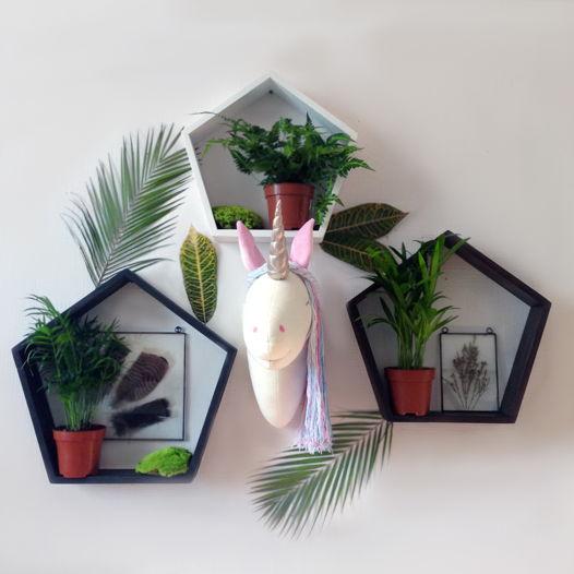 """Набор из трёх деревянных полок пятигранников""""Pinita"""""""