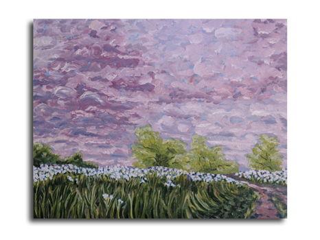 """""""Arbor Hills Sunrise"""""""