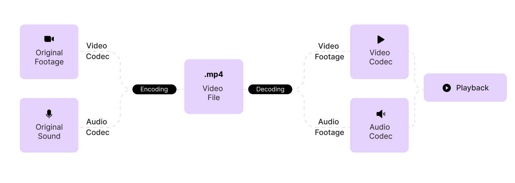 A schematic representation of a video encoding and decoding process for different types of video files