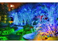 Atlanta Botanical Gardens  - Garden Lights Holiday Nights