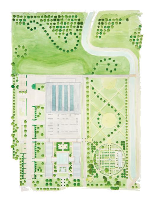 hand drawn graphic of the davines garden
