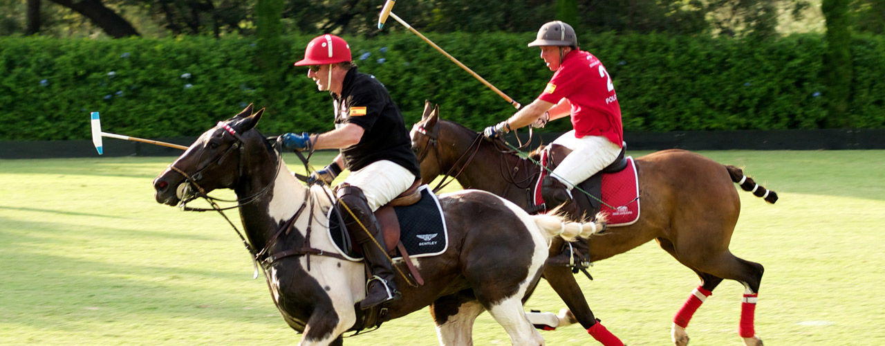 Hamburg - Polo-School-About Us-1.jpg