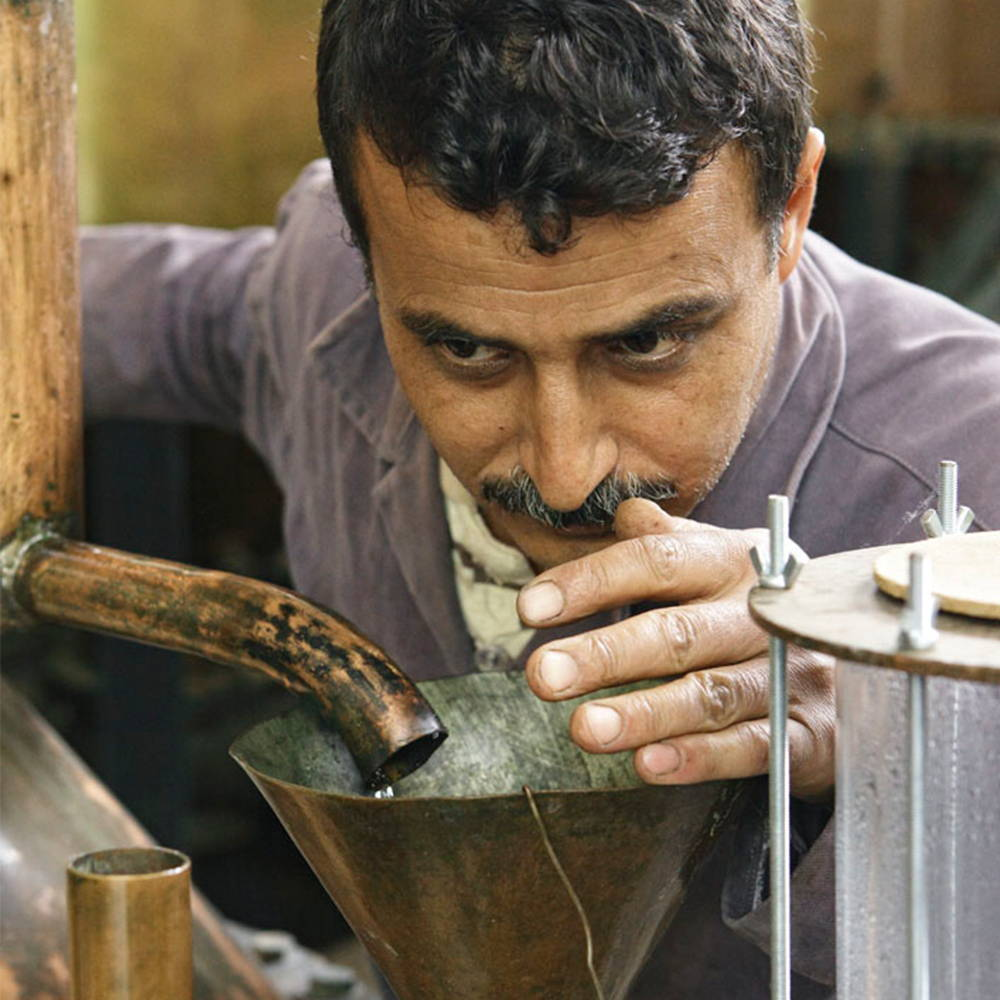 Man smelling the oils during distilling process