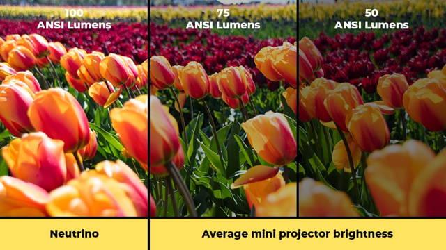 Neutrino: 100 ANSI Lumens. Other projectors: 50-75 ANSI Lumens