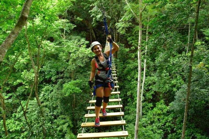 Image result for rain forest jaco