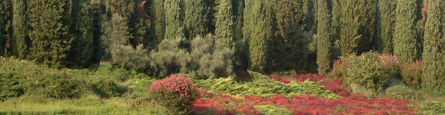Один из пяти самых ценных садов в мире — Парк Сигурта, г. Боргетто — родина тортеллин.