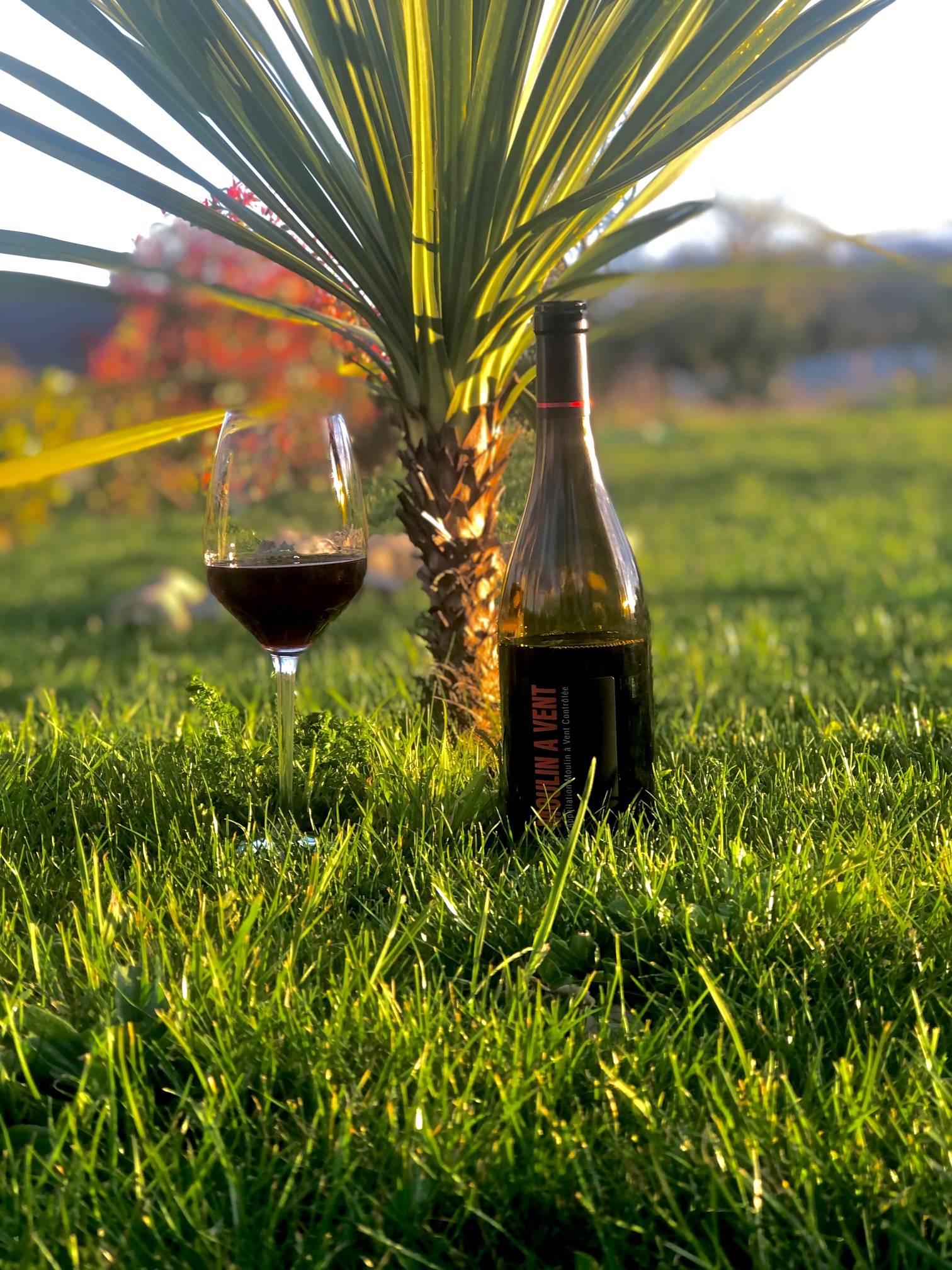 moulin à vent, christophe pacalet, gamay, beaujolais, france, vin nature, rawwine, organic wine, vin bio, vin sans intrants, bistro brute, vin rouge, vin blanc, rouge, blanc, nature, vin propre, vigneron, vigneron indépendant, domaine bio, biodynamie, vigneron nature, cave vin naturel, cave vin, caviste, vin biodynamique, bistro brute