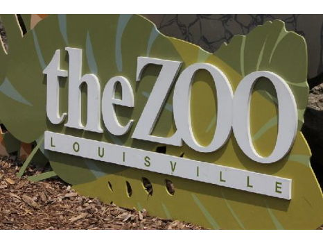 Go Behind the Scenes at the Louisville Zoo