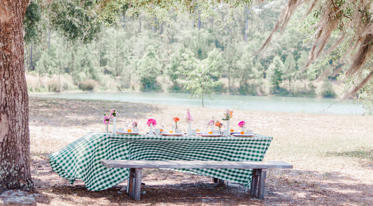 A Southern Shabby Chic Picnic