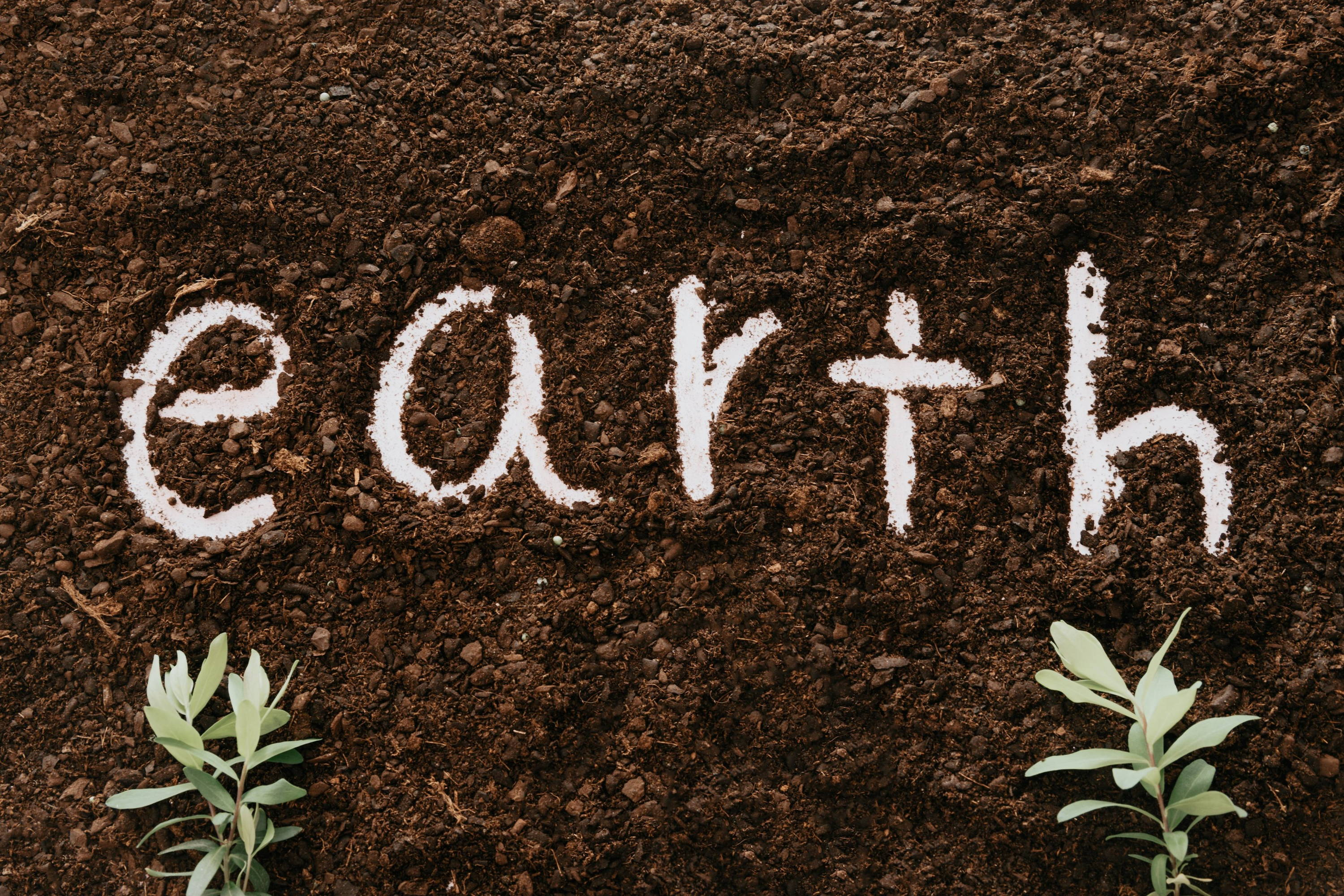 Earth written in soil demonstrating how soil can impact a Sauvignon Blanc's flavours and aromas.