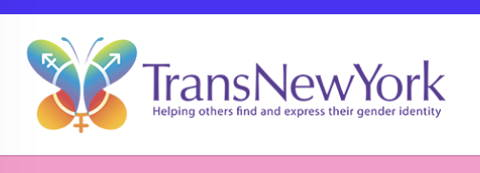 Trans New York Link & Logo