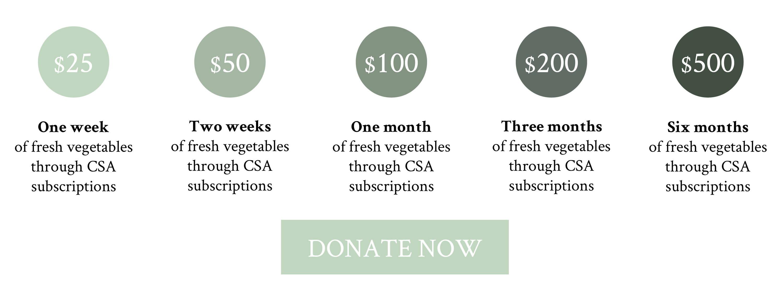 Davines CSA donation tier donate now