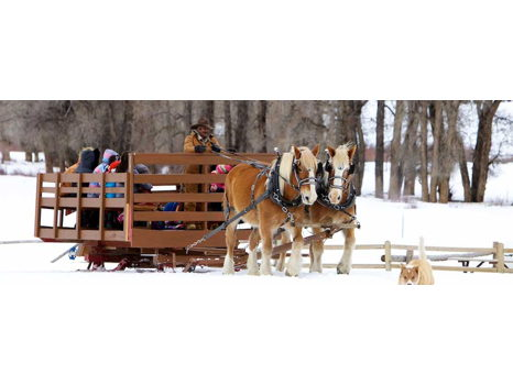 4 Eagle Ranch Sleigh Ride Dinner
