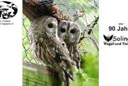 solinger vogel und tierpark eulen