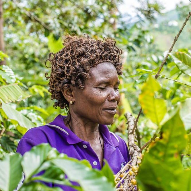 Dignified farmer - Ms Victorina Kanane