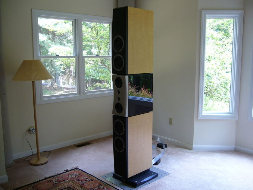 Dynaudio Evidence Temptation Birdseye Maple