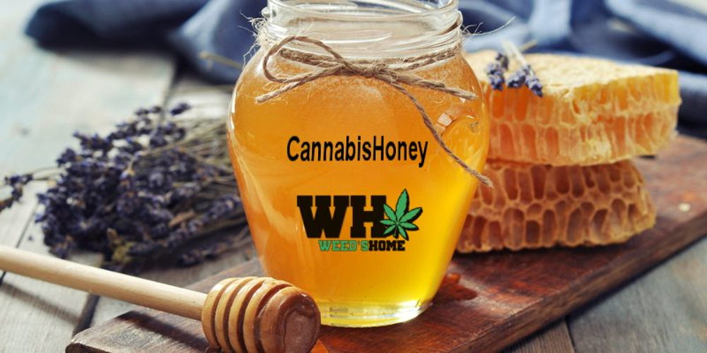 How to make Cannabis Honey easy at Home