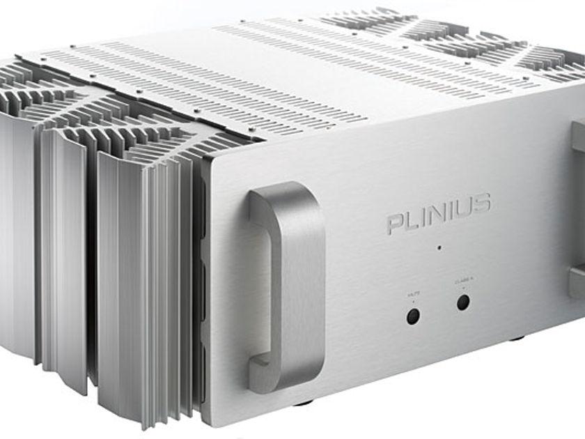 (2) Plinius  SA-103 used as (2) Bridged/Balanced Mono blocks @ 460 watts each into 8 ohms