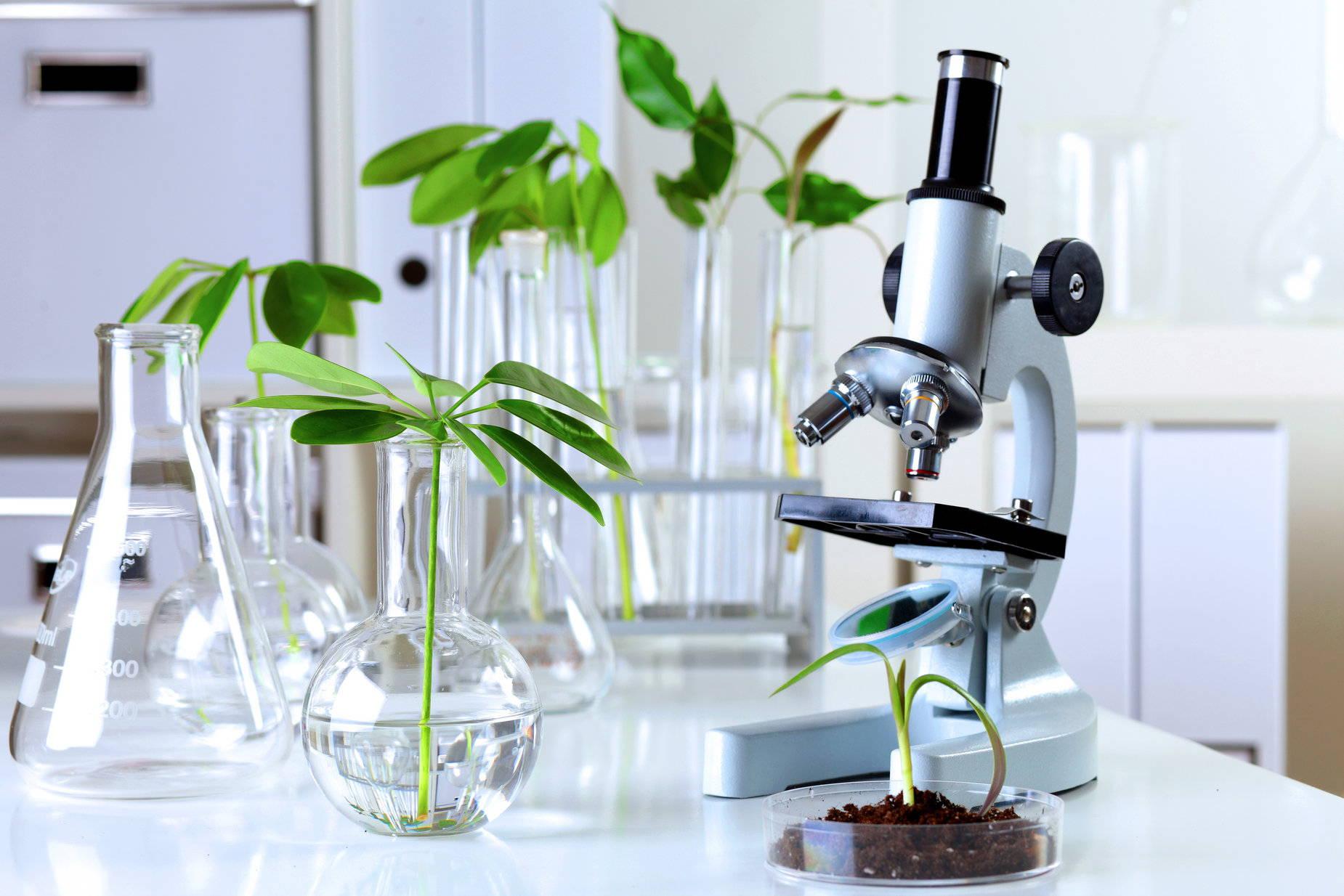 Картинки лаборатория биологии