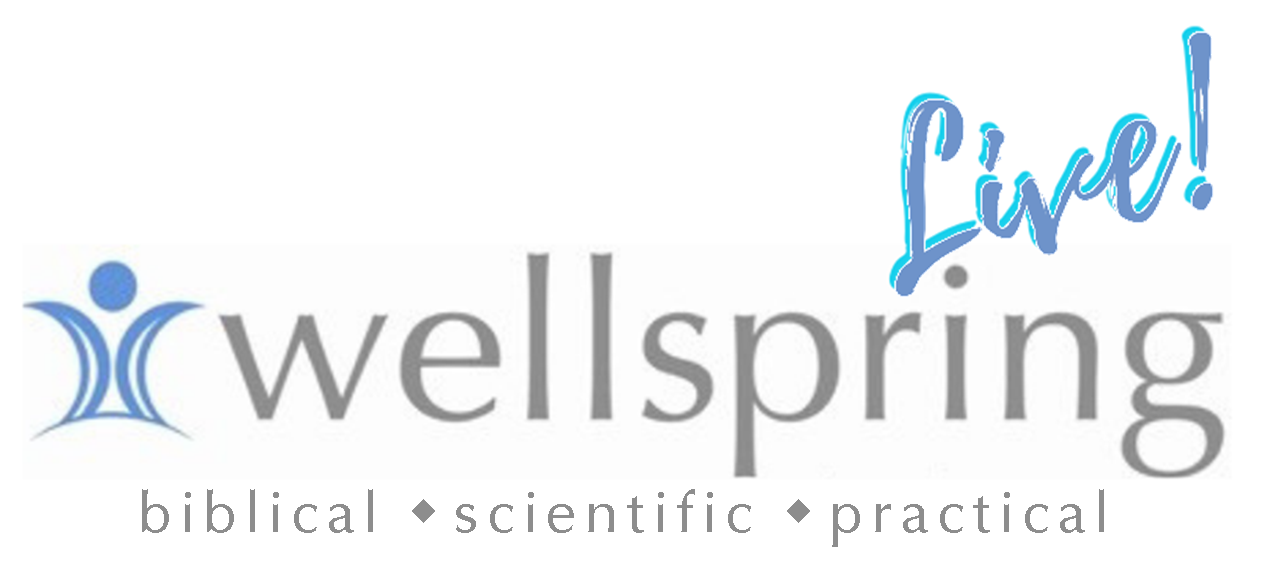 Wellspring Counseling Christian Counseling In Miami