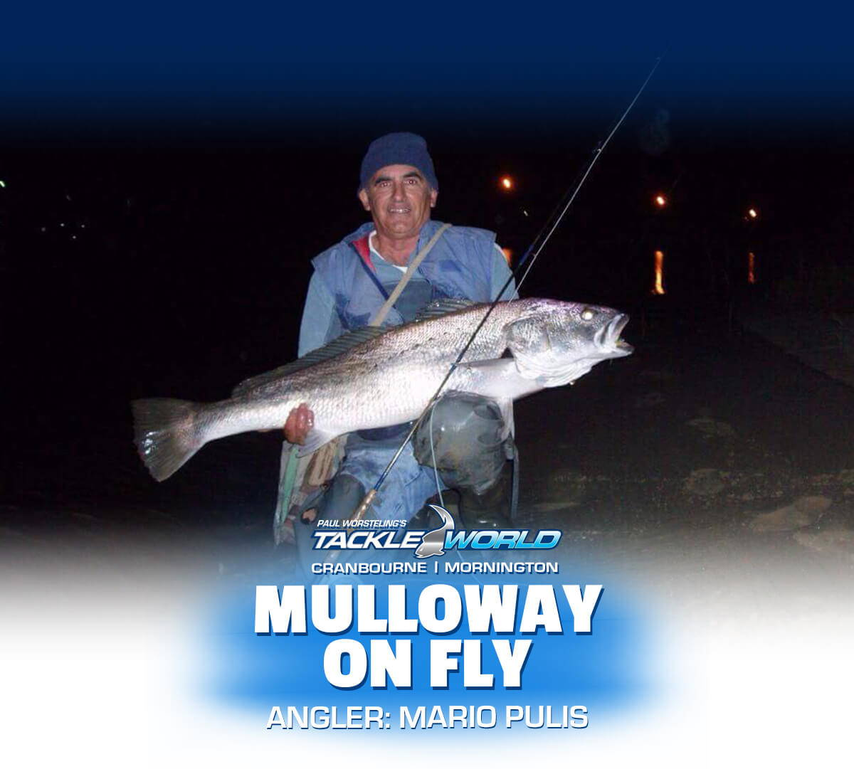 Mulloway on fly caught by Mario Pulis