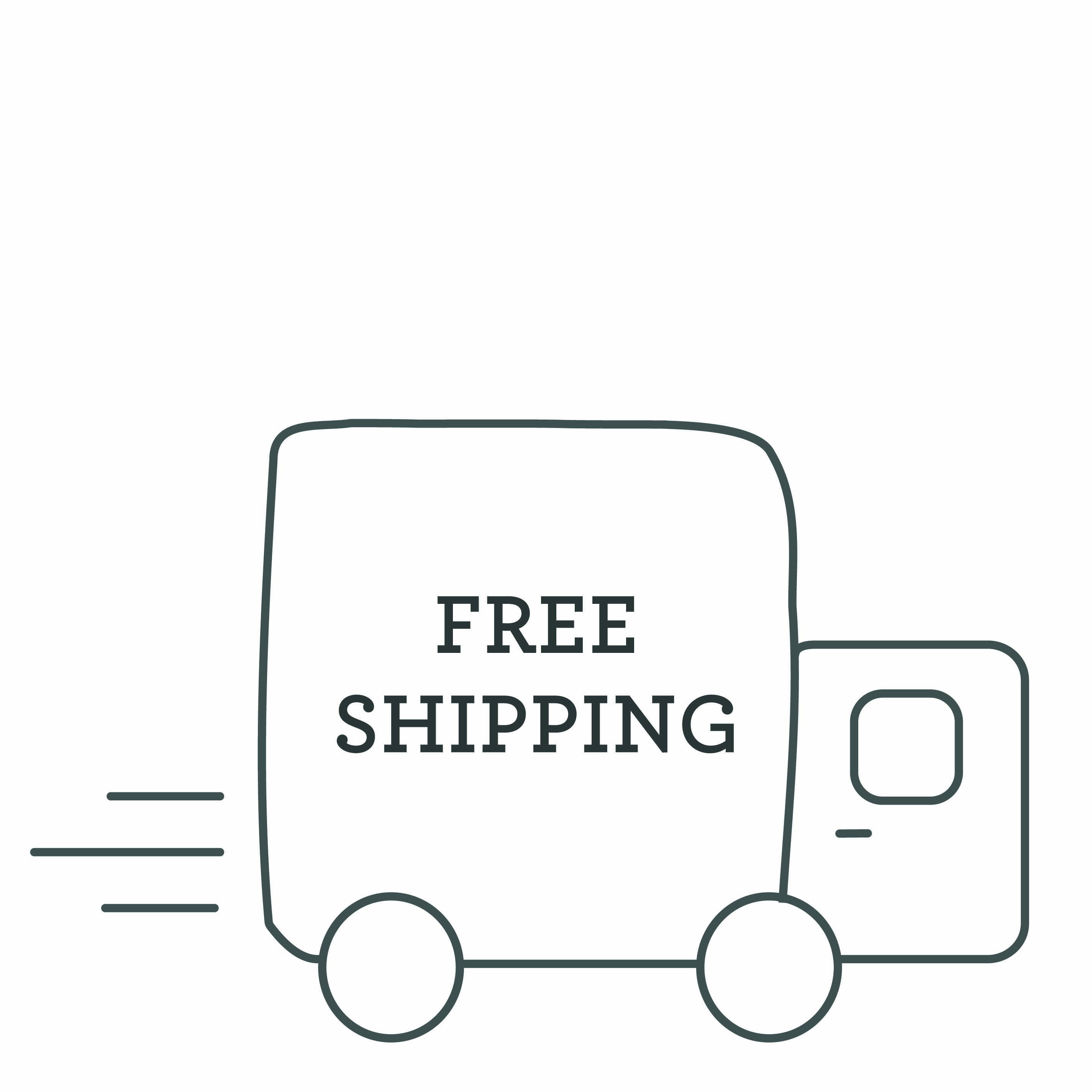 Free shipping icon. Illustration