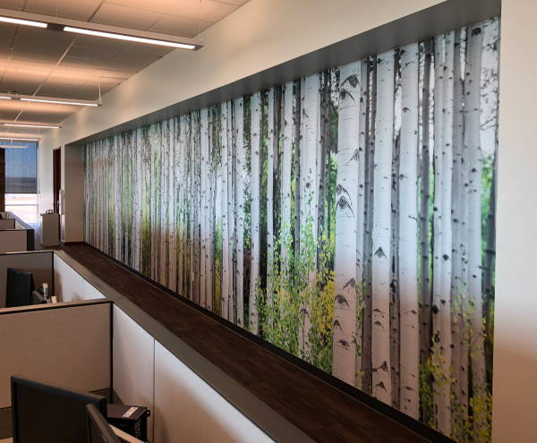 Interior Vinyl Wall Wrap -  Aspen Trunks Wall Wrap