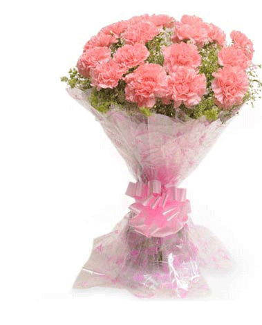 HF Pink Carnation Bouquet